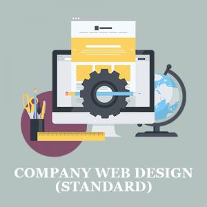 Company Web Design (Standard)