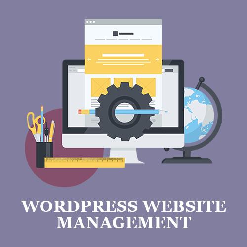 Wordpress Website Management